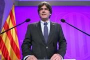 Tây Ban Nha: Thủ hiến Catalonia Puigdemont có thể bị bắt giữ