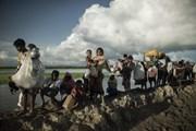 Bangladesh cho phép nhập cảnh đối với 10.000 người Rohingya