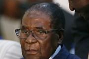 Liên đoàn Thanh niên ZANU-PF kêu gọi Tổng thống Zimbabwe từ chức