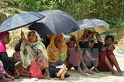 Myanmar lập ủy ban cố vấn thực thi các khuyến nghị về bang Rakhine