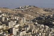 OIC kêu gọi công nhận Đông Jerusalem là thủ đô của Palestine