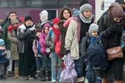 Số người xin tị nạn mới tại Đức đã giảm mạnh trong năm 2017