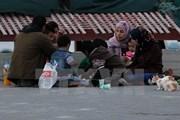 Mỹ cắt 65 triệu USD hỗ trợ cho cơ quan viện trợ Palestine của LHQ