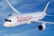 Liên minh châu Phi tìm cách cứu ngành hàng không thoát thua lỗ