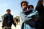 Nga xác nhận 73.000 người dân Syria đã sơ tán khỏi Đông Ghouta