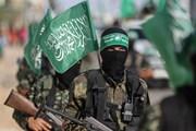 Phái đoàn cấp cao Hamas tới Ai Cập để thảo luận tình hình Dải Gaza