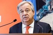 Liên hợp quốc quan ngại việc gia tăng căng thẳng ở Tây Nam Syria