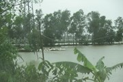 Kịp thời cứu một người bị nước lũ cuốn trôi tại tỉnh Nghệ An