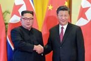 Ông Tập Cận Bình sắp có chuyến thăm đầu tiên tại Triều Tiên