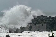 Trường học của Sơn Tinh dạy trẻ nhận biết sóng thần, thiên tai