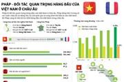 [Infographics] Quan hệ đối tác chiến lược Việt Nam-Pháp