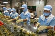 Vì sao nông sản Việt vẫn chưa chinh phục được thị trường Hàn Quốc?
