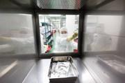 Thêm một liệu pháp gene điều trị ung thư máu được cấp phép tại Mỹ