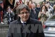 Đảng của cựu Thủ hiến Catalonia từ bỏ nỗ lực tuyên bố độc lập