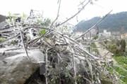 Nhiệt độ Hà Nội tụt xuống 9 độ C, vùng núi có thể xuất hiện băng giá