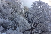 Tái hiện khung cảnh tuyết rơi tại Lễ hội mùa Đông Sa Pa 2017