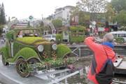 Khai mạc không gian hoa nghệ thuật quanh Công viên hồ Xuân Hương
