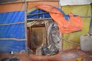 """""""Địa đạo"""" khai thác vàng trái phép tại Kon Tum: Xử lý nghiêm vi phạm"""