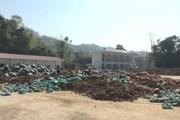 Xử lý sự cố vỡ ao chứa chất thải ở Điện Biên, đền bù cho người dân