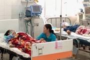 Vụ ngộ độc do ăn cá nóc: Các bệnh nhân đã qua cơn nguy kịch