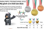 [Infographics] Mỹ nhất toàn đoàn tại Paralympic PyeongChang 2018