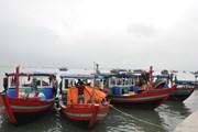 Bắt giữ 5 tàu khai thác thủy sản trái phép tại Trà Cổ