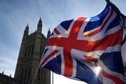 Trưởng đoàn đàm phán EU: Còn chặng đường dài trong tiến trình Brexit