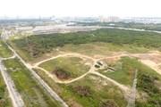 Thành phố Hồ Chí Minh kiên quyết thu hồi và bán đấu giá đất công