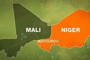 Niger: Nhóm vũ trang từ Mali xả súng, giết hại dân thường