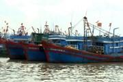 Việt-Trung đàm phán vòng 11 về các vấn đề ít nhạy cảm trên biển