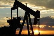 Giao tranh dữ dội, Libya phải đóng cửa cảng dầu Es Sider