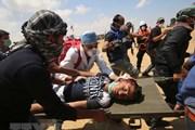 Palestine cảnh báo các nỗ lực hòa bình của Mỹ sẽ thất bại