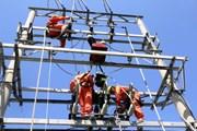 Quảng Ninh khắc phục sự cố cáp điện tại đảo Cô Tô, Vân Đồn