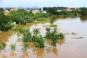"""""""Điểm danh"""" các địa phương có nguy cơ ngập úng do bão số 4"""