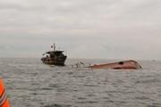 Bình Thuận: Truy tìm tàu vận tải đâm chìm tàu cá rồi bỏ chạy