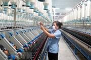 Hướng đi nào để giám sát hiệu quả doanh nghiệp nhà nước?