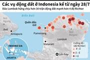 [Infographics] Các vụ động đất ở Indonesia kể từ cuối tháng Bảy