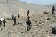 Afghanistan tiêu diệt khoảng 20 tay súng Taliban sau cuộc không kích