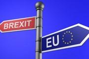 EC: Anh cam kết tôn trọng thỏa thuận Brexit tạm thời với EU