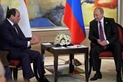 Tổng thống Nga công du Ai Cập, Thổ Nhĩ Kỳ thảo luận các vấn đề quốc tế