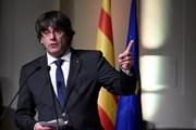 [Video] Tòa án Bỉ ngừng xem xét dẫn độ ông Carles Puigdemont