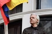 Nhà sáng lập WikiLeaks không nên can thiệp vào chính trị Tây Ban Nha