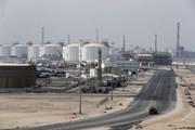 OPEC: Thị trường dầu mỏ thế giới sẽ cân bằng trong năm nay