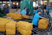 Tập đoàn Công nghiệp cao su Việt Nam sẽ bán hơn 475 triệu cổ phiếu
