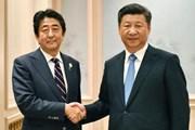 Trung Quốc chia sẻ mong muốn của Nhật Bản về quan hệ song phương