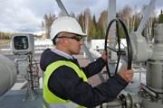 Đức sẽ cấp phép xây dựng dự án Dòng chảy phương Bắc 2 vào tháng Ba