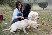[Video] Độc đáo ảnh viện dành riêng cho vật nuôi tại Ukraine