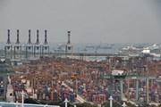 IMF: Châu Á bị tổn hại do căng thẳng thương mại leo thang
