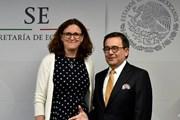 Liên minh châu Âu và Mexico đạt thỏa thuận sơ bộ về FTA mới