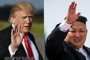 Tổng thống Mỹ Donald Trump ca ngợi nhà lãnh đạo Triều Tiên